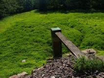 被排泄的池塘 库存照片