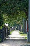 被排行的郊区居民结构树 图库摄影
