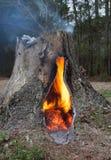 被控制的火势 免版税库存照片