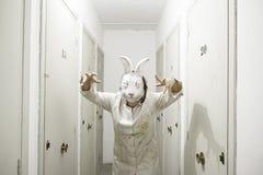 被掩没的妇女兔子 图库摄影