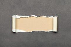 被撕毁的纸与您的消息的米黄空间 免版税库存照片