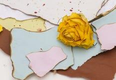 被撕毁的纸与被烧焦的边缘和一朵黄色玫瑰 库存照片
