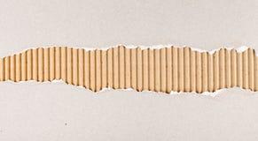被撕毁的纸板详细资料巨大纹理 免版税库存照片