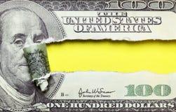 被撕毁的美元 免版税库存图片