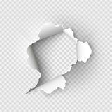 被撕毁的褴褛孔在被剥去的纸 库存照片