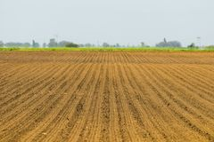 被播种的域 农业领域在春天 播种庄稼 免版税库存照片