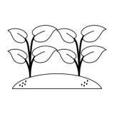 被播种的植物从事园艺动画片 皇族释放例证
