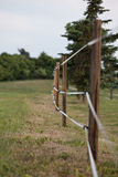 被操刀的牧场地 库存图片