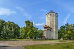 被支付的城堡,爱沙尼亚 库存图片