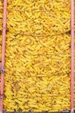 被收获的玉米新鲜 图库摄影