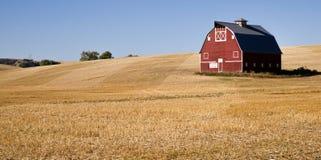 被收获的红色农厂谷仓裁减秸杆 免版税库存图片