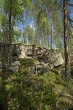 被放弃的二战地堡在Vaermland,瑞典 它称Skans 176 Dypen 库存照片