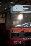 被放弃的公共汽车舰队 免版税库存图片
