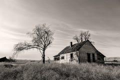 被放弃的农厂房子B&W  库存图片