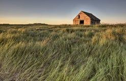 被放弃的农舍萨斯喀彻温省加拿大 图库摄影