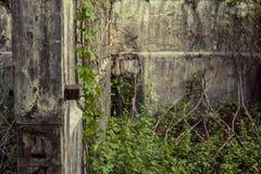 被放弃的动物园 库存图片