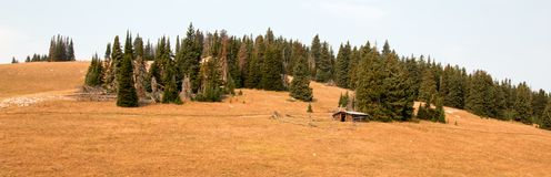 被放弃的原木小屋宅基在蒙大拿美国的中央落矶山 库存照片