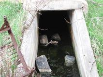 被放弃的地窖 免版税库存照片