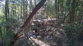 被放弃的嬉皮公共汽车在密林 库存照片
