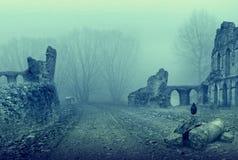 被放弃的安排 老废墟和黑鸟 免版税库存图片