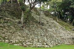 被放弃的寺庙, Copan废墟,洪都拉斯 免版税库存照片