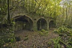 被放弃的工厂在森林 免版税库存图片