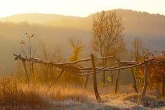 被放弃的庭院在秋天早晨 库存照片
