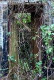 被放弃的房子在一个传统村庄在HK 免版税库存图片