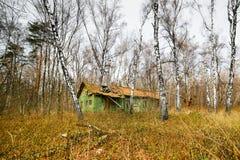 被放弃的房子在秋天森林里 免版税库存照片