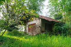 被放弃的房子在绿色庭院里,泰国 库存图片