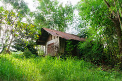 被放弃的房子在绿色庭院里 库存照片