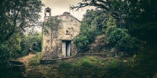被放弃的教堂在盖帽的Corse森林地在可西嘉岛 图库摄影