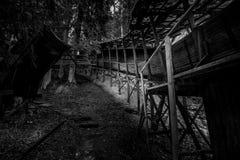 被放弃的无舵雪橇轨道通过森林曲折前进它` s方式 免版税图库摄影