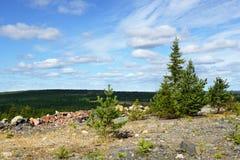 被放弃的最小值 北芬兰 图库摄影