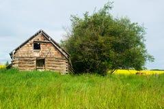 被放弃的木屋 免版税库存照片