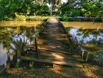 被放弃的木桥 库存照片
