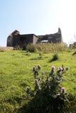 被放弃的村庄爱尔兰老废墟 免版税图库摄影