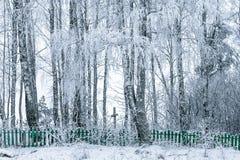 被放弃的村庄的老公墓 图库摄影