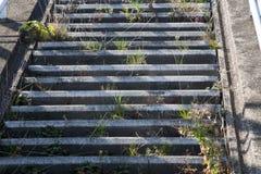被放弃的楼梯 库存图片