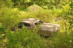 被放弃的汽车在森林 图库摄影