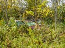 被放弃的汽车在森林 库存图片