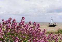 被放弃的海滩小船 免版税库存图片