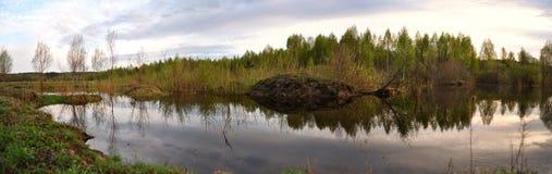 被放弃的湖 库存图片