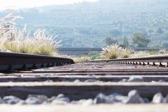 被放弃的火车路轨 图库摄影