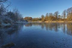 被放弃的猎物池塘 免版税库存图片