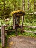被放弃的电话亭到可可西里山雨林里, 免版税库存图片