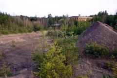 被放弃的矿和大厦在森林里 库存照片