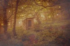 被放弃的精神房子在不可思议的森林里 免版税库存照片