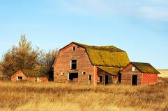 被放弃的红色谷仓 库存照片