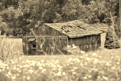 被放弃的老棚子 库存照片